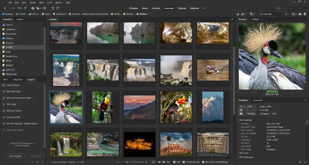 Adobe Bridge gets integration with Premiere Pro and Media Encoder