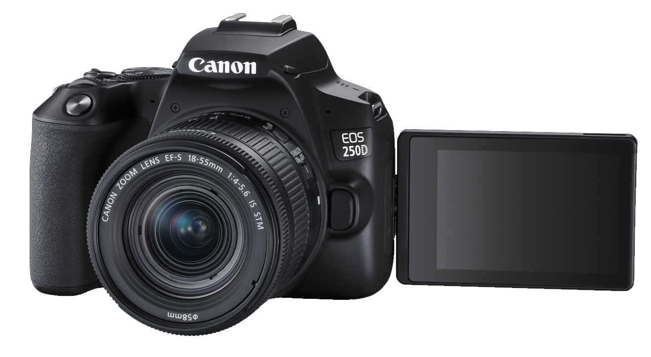 Canon EOS 250D - compact APS-C DSLR with 4K video, DualPixelAF for 549 Euro