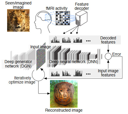 Deep-Image-Reconstruction-overview
