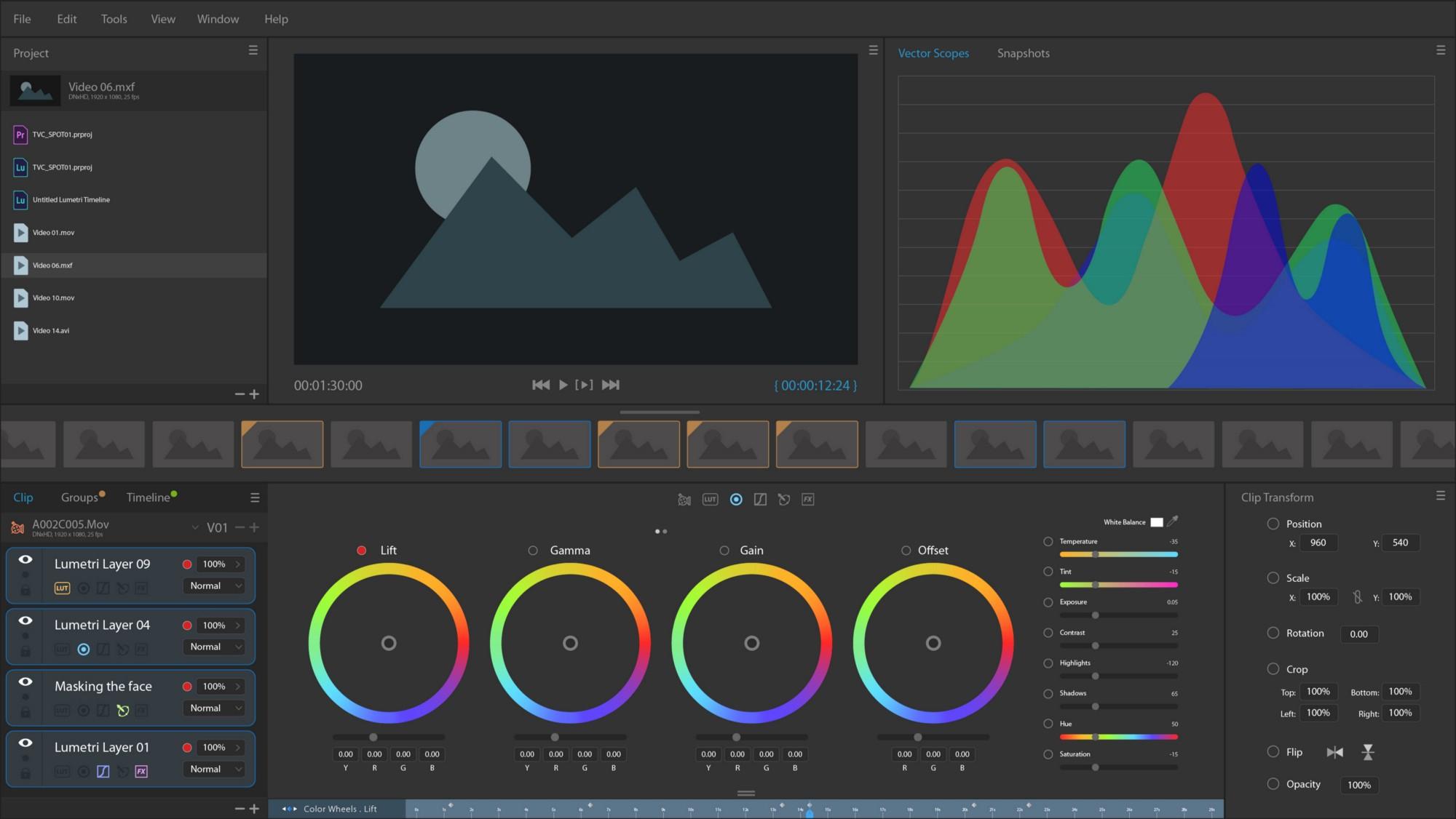 User concept study Color Grading: Virtual prototype for Adobe Lumetri CC