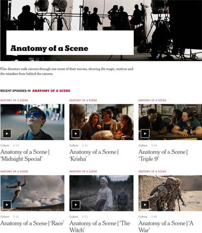 anatomy_ofa_scene