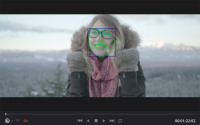 DaVinciResolve14_Facetracke