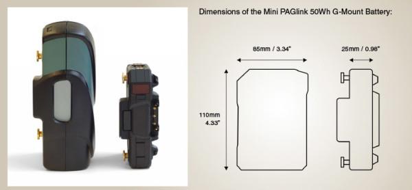 Mini-PAGlink-Size