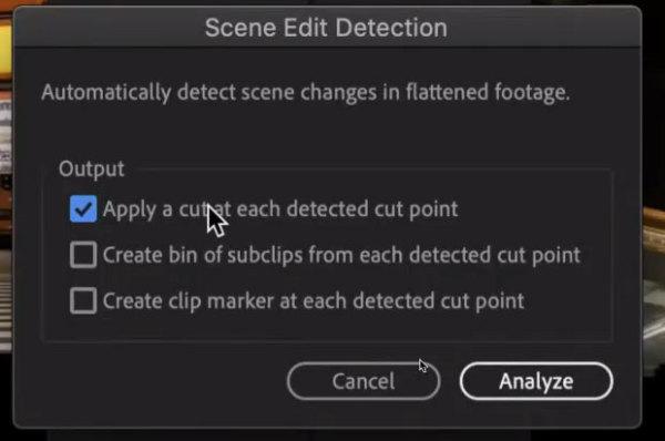 PIC1_scene_edit_Detection