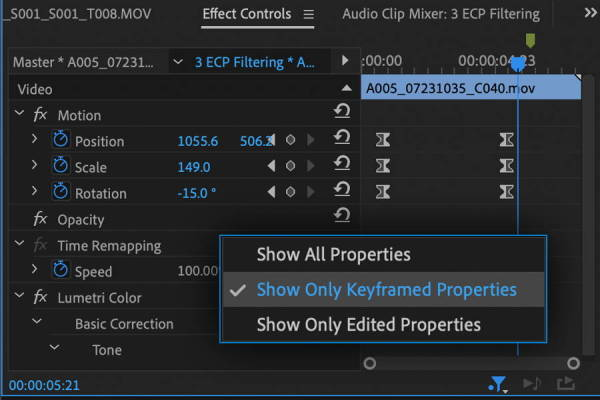 PIC3_FilterEffects_Premiere-Pro