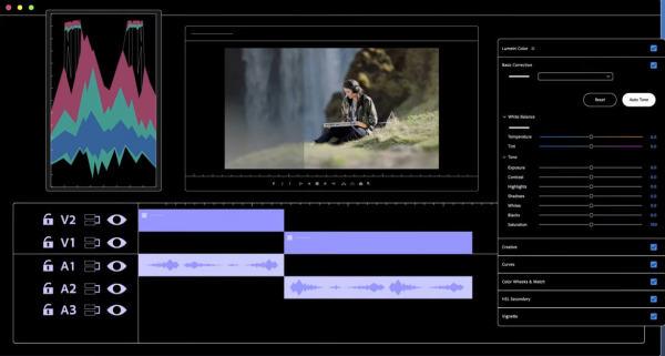Premiere-Auto-Tone-Screen