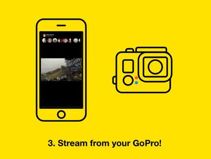 meerkat_GoPro