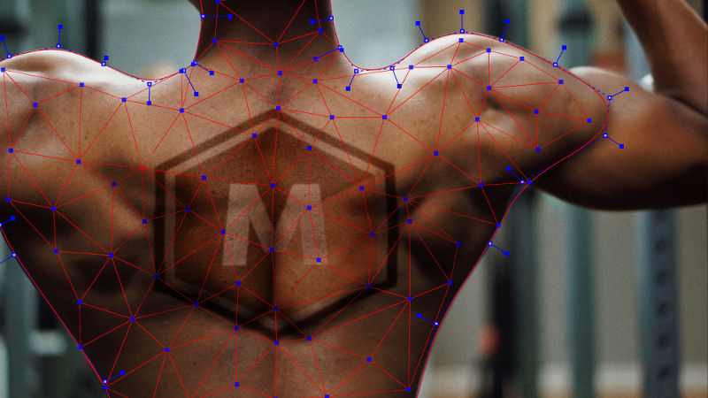 Mocha Pro 2021 goes sub-planar with new PowerMesh Tracking option
